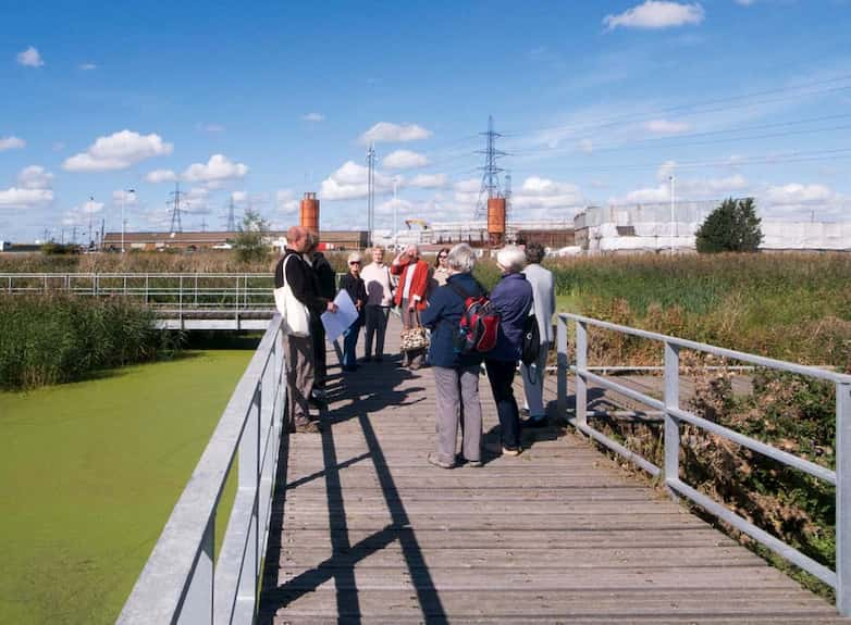 Visitor group, seen here on a new section of boardwalk, set within the restored reedbeds.