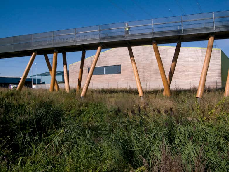Pedestrian bridge with steel deck supported on timber columns over the marshland.